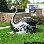 Swan outside a radiology office. Lakeland Hills Blvd. Lakeland, FL