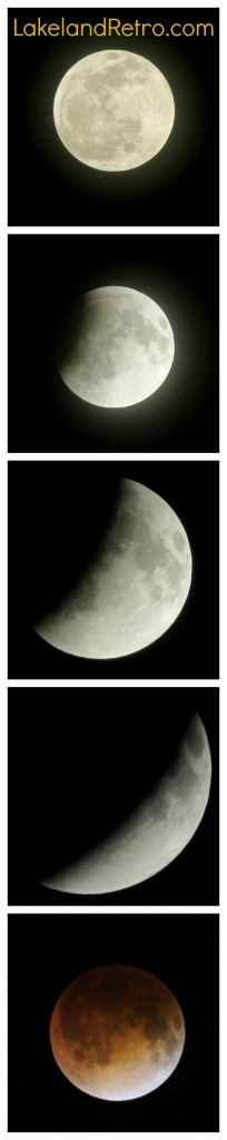 "Here are some shots of the April 15th, 2014  lunar eclipse and ""blood moon"" as viewed in Lakeland, Florida."
